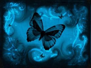 blue-butterfly-marketing
