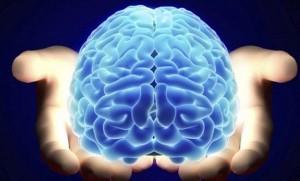 internet_rewires_the_brain