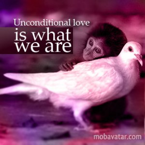 unconditional-love-is-what-we-are